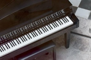 Carlota Piano in Quito