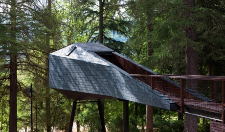 Pedras Salgadas Architecture Tree House M 09 R