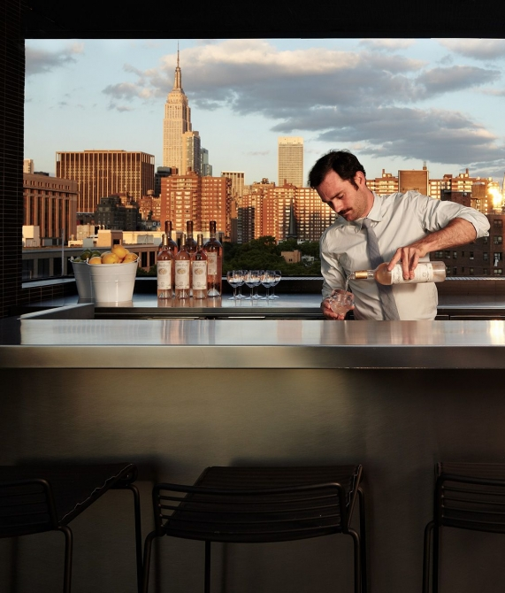 Hotel Americano Rooftop Bar in NYC, United States