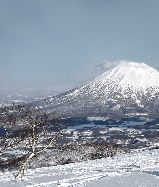 Niseko Japan Design Hotels™